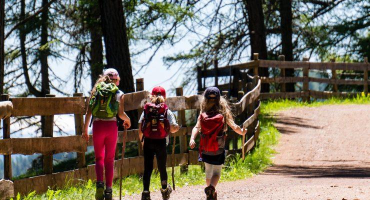 Na zdjęciu widoczna jest trójka dzieci z plecakami, idąca szlakiem.